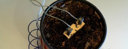 Умный дом,Автомат полива растений